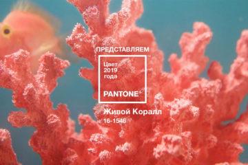 PANTONE 16-1546 Living Coral
