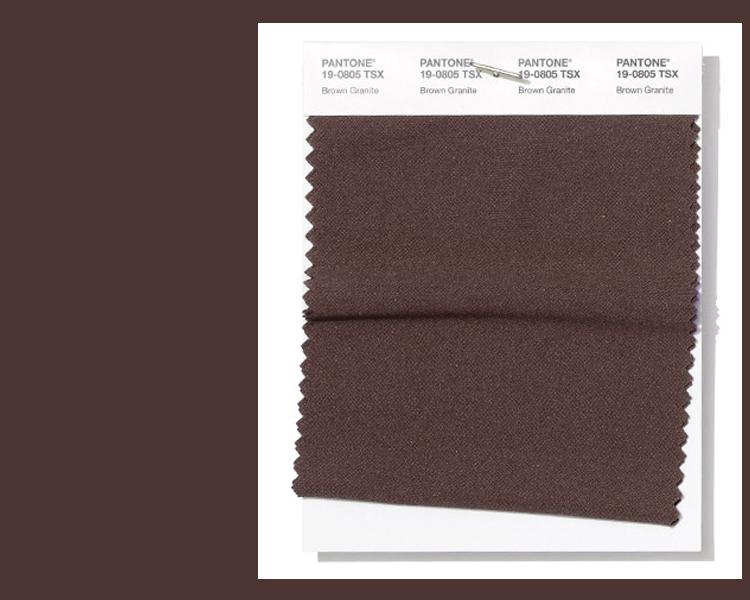 PANTONE 19-0805 Brown Granite (коричневый гранит)